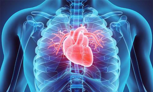 Реферат - Хроническая ревматическая болезнь сердца и стеноз устья аорты
