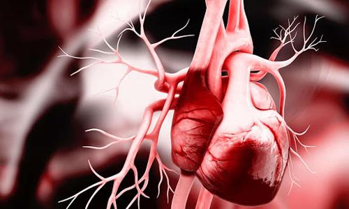 Курсовая работа - Сестринский уход за пациентами с пороками сердца